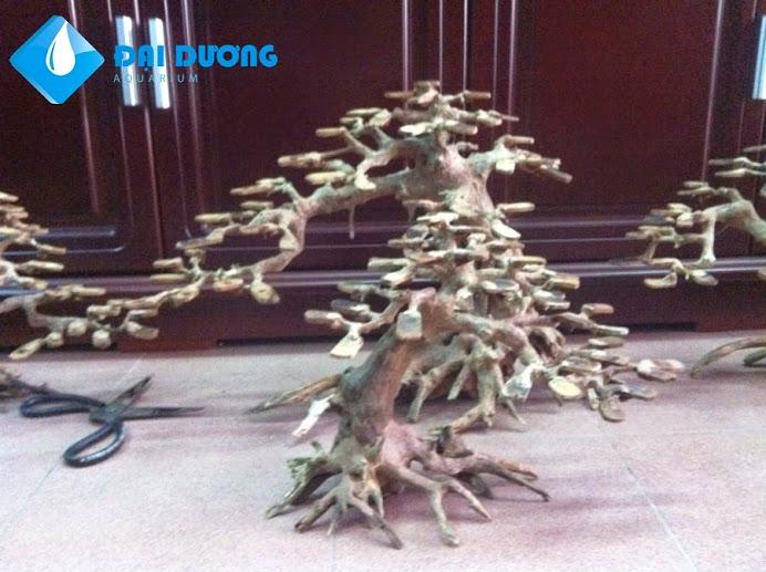 Lũa bonsai hồ cá thủy sinh 4