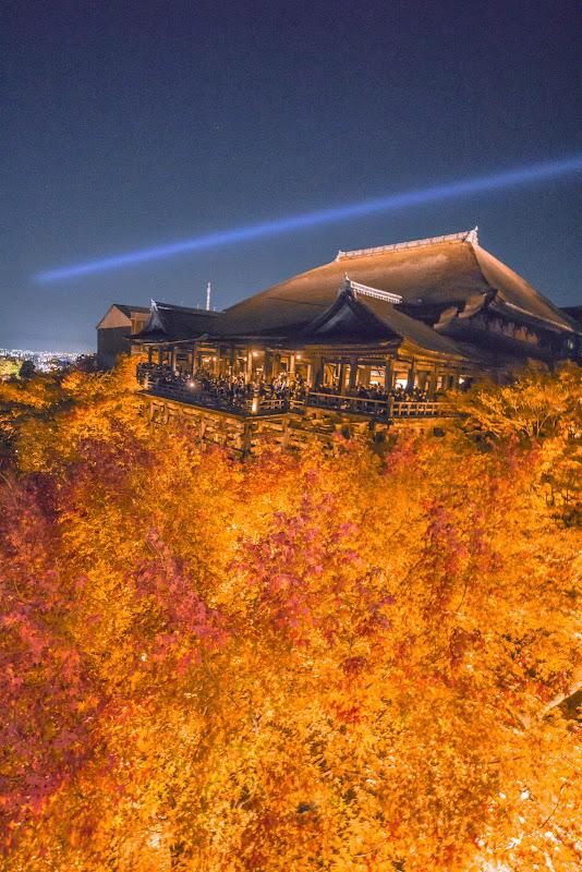 京都 紅葉 清水寺 ライトアップ 写真3