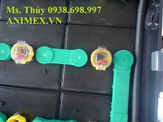 Bình điện xe nâng 48V 565AH