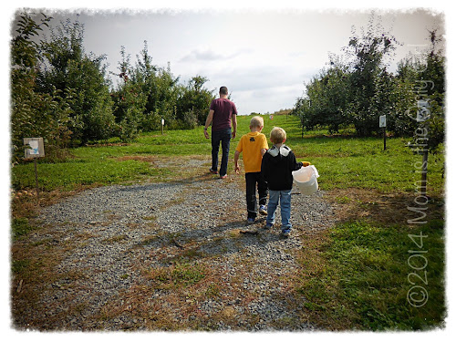 apple picking https://momistheonlygirl.com