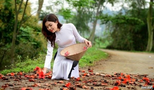 Thơ hoa Mộc Miên hay, chùm thơ tình Mộc Miên buồn & lãng mạn