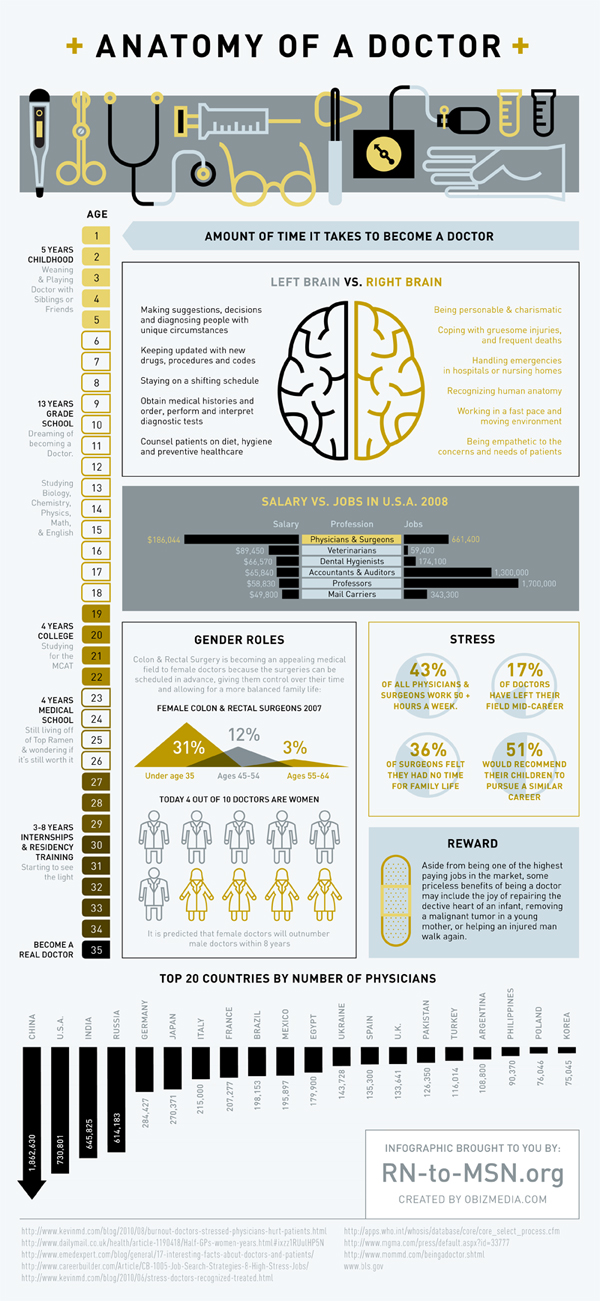 Anatomy Of A Doctor, An Infographic