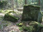 Hier ist das einzigste Stück Weg mit weichem Boden. Ansonsten gibt es hier im Odenwald fast nur feste, geschotterte Wege.