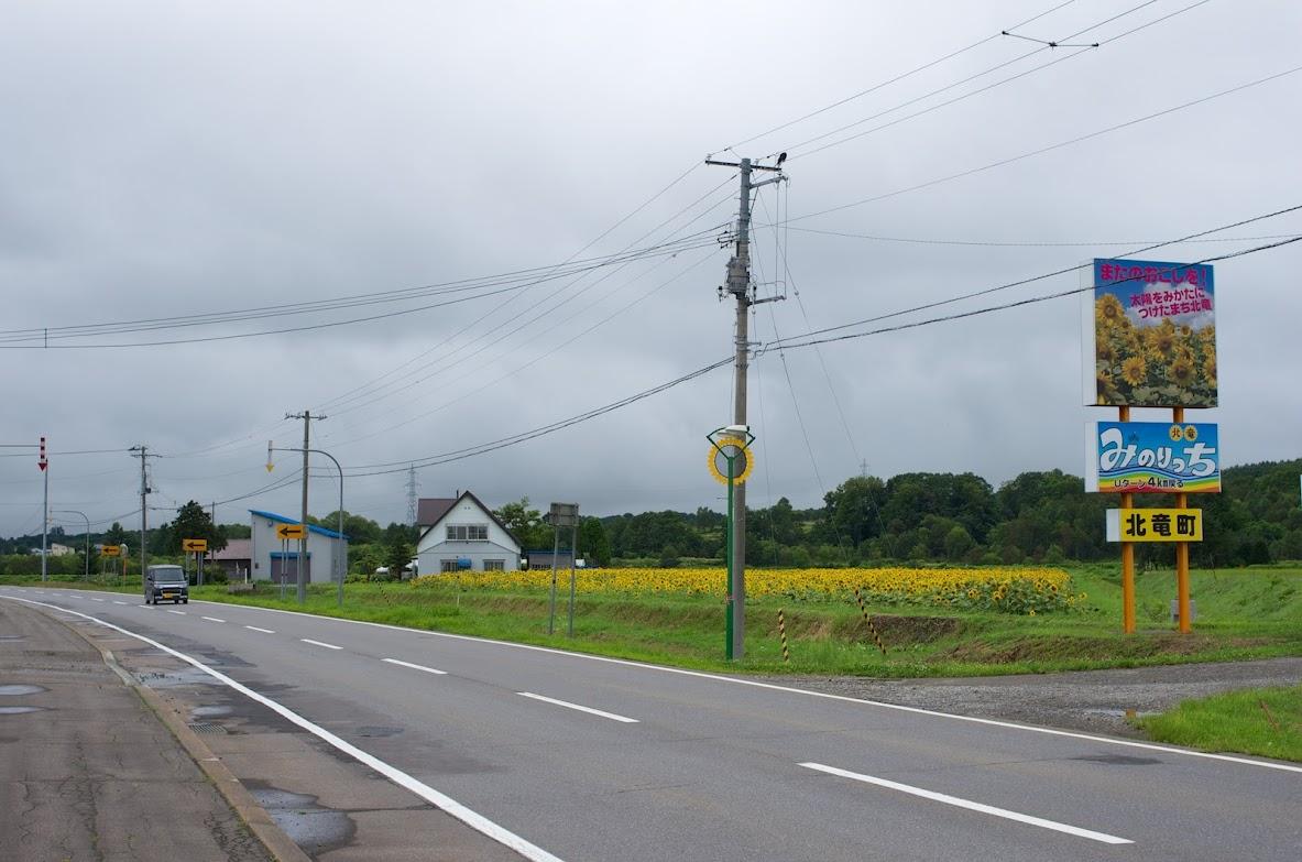 8月20日(水)北竜町内・国道275...