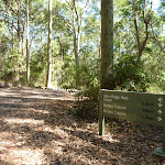 Detailed sign on the Tall Trees walk in Blackbutt Reserve (400228)