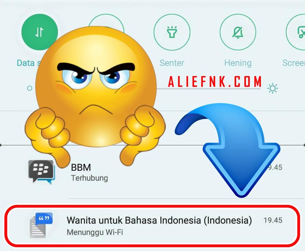 Cara Menghilangkan Notifikasi Wanita Untuk Bahasa Indonesia Menunggu Wi-Fi di Smartphone Xiaomi / Mi Phone