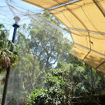 Large aviary at the Wildlife Exhibits at Carnley Ave Reserve in Blackbutt Reserve  (402151)