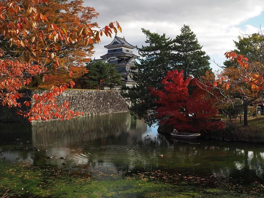 automne matsumoto