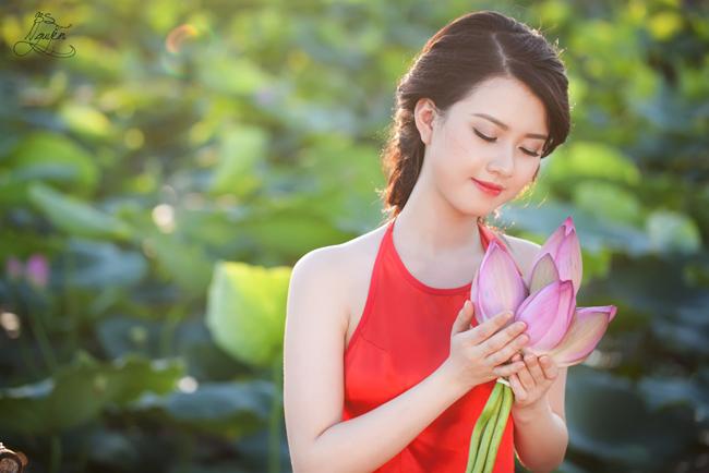 Ảnh hoa sen và thiếu nữ xinh đẹp