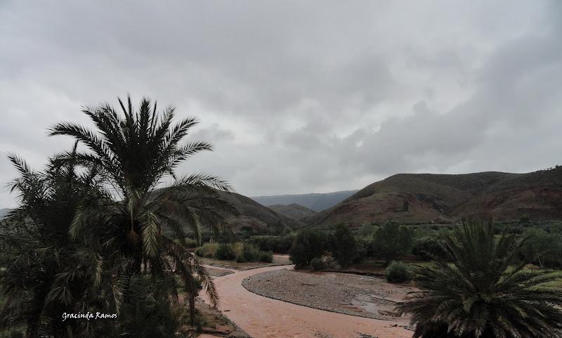 marrocos - Marrocos 2012 - O regresso! - Página 5 DSC05259