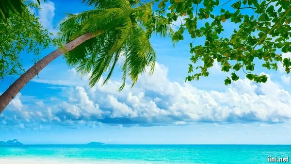 ảnh biển đẹp với bầu trời trong xanh