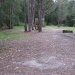 Wallingat River camping ground