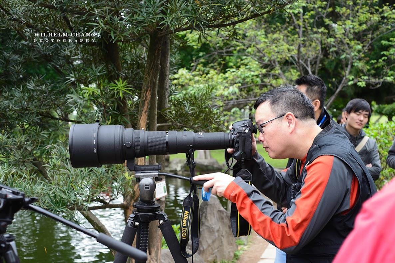 D600+50mm f1.8D Nikkor 800mm f/5.6E FL ED VR
