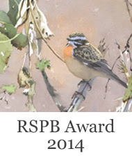 RSPB Award 2014