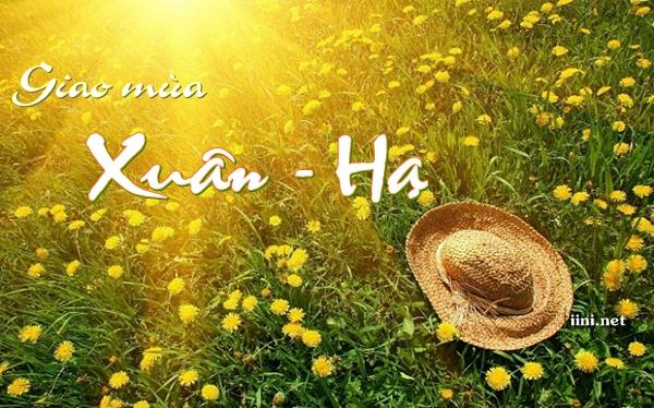 Thơ giao mùa Xuân Hạ hay, chùm thơ tình cuối Xuân đầu Hạ lãng mạn nhất