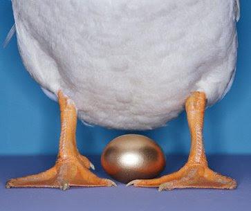 下金蛋的鵝