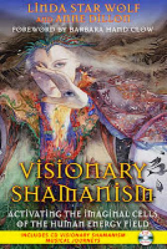 New Review Of Visionary Shamanism By Bonnie Cehovet