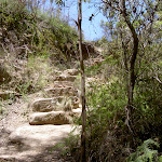 Stairs north of Pope's Glen (15400)