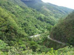 Los valles de los Yungas, casi la selva del Amazonas