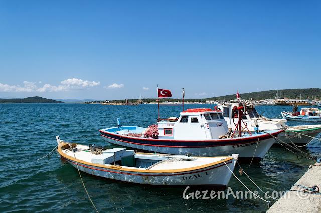 Cunda sahilindeki tekneler