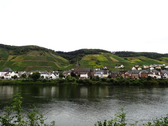 passeando - Passeando pela Suíça - 2012 - Página 21 DSC08451