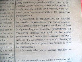Características del terciario en bonita letra similar a la Bodoni.