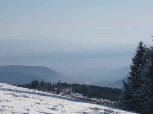 Depuis le crête du petit Ballon, vue vers les Alpes suisses (bon courage pour reconnaître les sommets !)