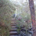 Stairs along the Nature Track (185517)