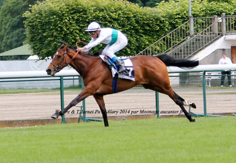 Photos Longchamp 25-05-2014 IMG_1231