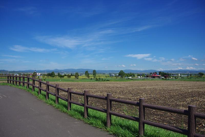 写真:ひまわりPG場付近