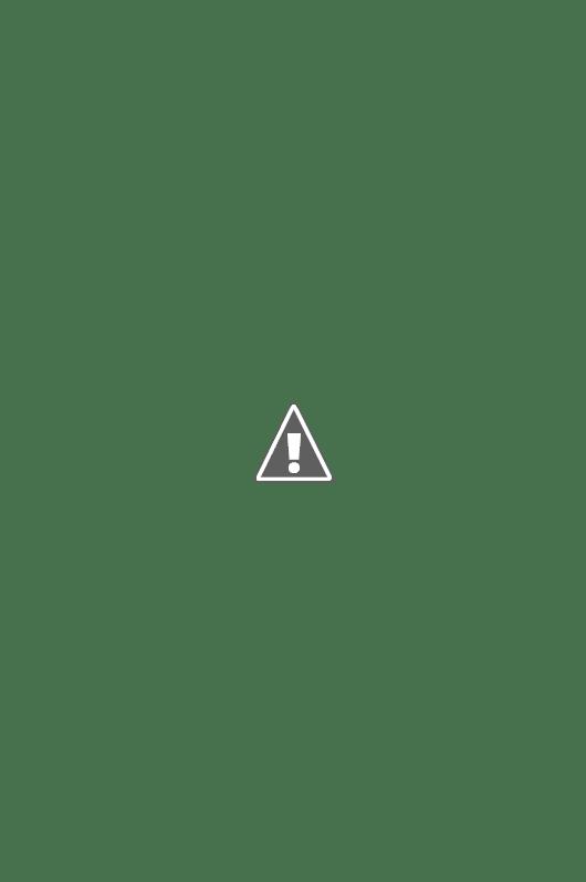 Nef de l'église Notre-Dame d'Annecy