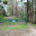 Blackwattle Trail gate behind Cherrybrook RFS (152665)