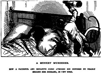 National Police Gazette, monkey, murder