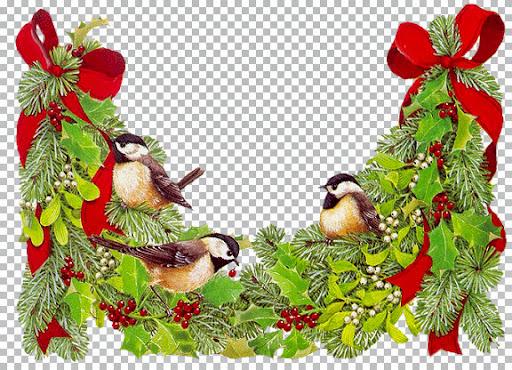 kt_christmas-greenery.jpg