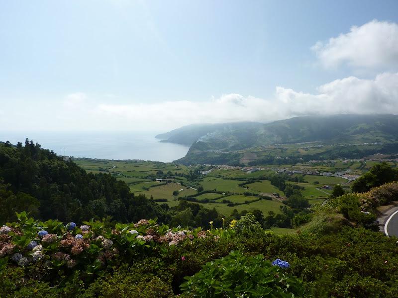Açores- Natureza viva P1000311