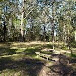 Walkers rest area on Kingtree Ridge Fire Road (365471)