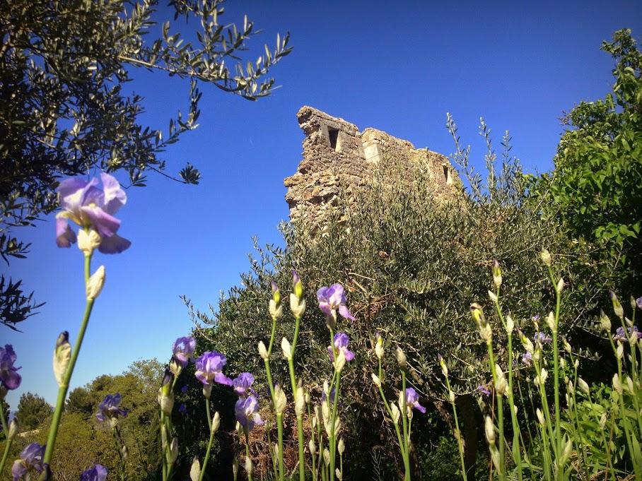 Руины в заброшенной деревеньке Oppede-de-Vieux