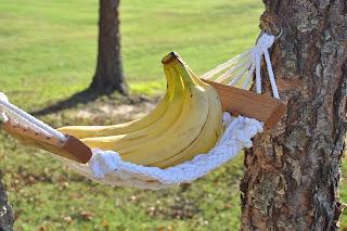 banana hammocks    banana hammocks      cowboy creations llc  rh   sites google