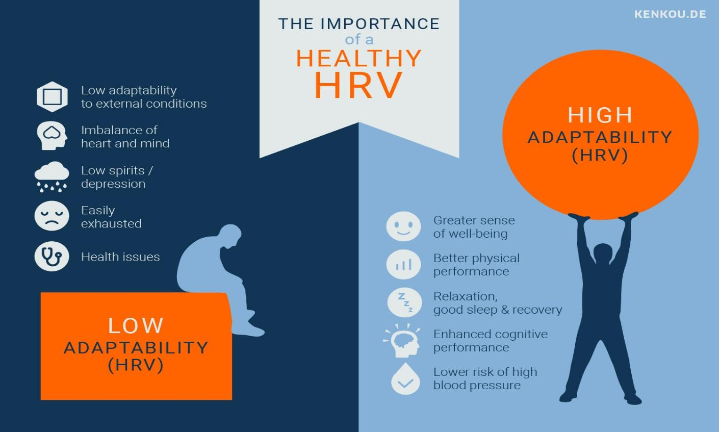 The Importance of a Healthy HRV