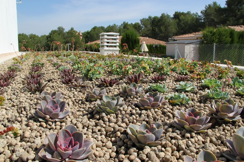 Cubierta ajardinada cubierta vegetal cubiertas vegetales techos verdes green roof