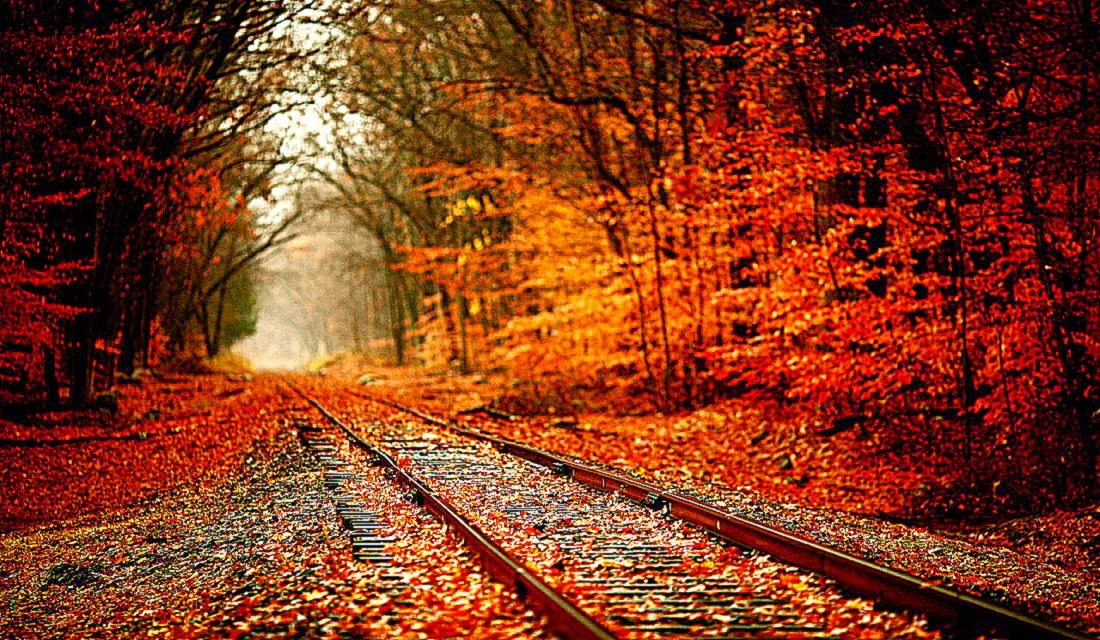 landscape autumn hd wallpaper - photo #39