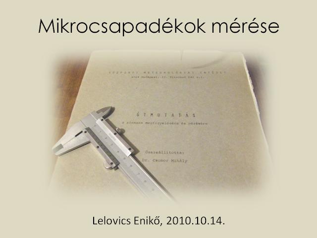 Lelovics Enikő, 2010