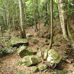 Mossy boulders on Valley on Waterman Walk (226420)