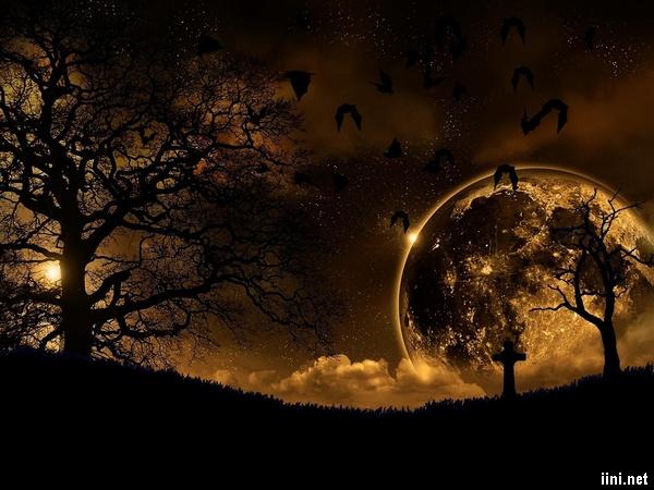 ảnh đêm trăng nghệ thuật