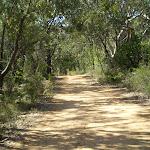 Perimeter Trail near Terrey Hills (27281)