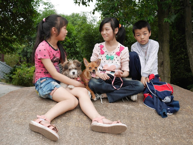 two girls and a boy with two dogs sitting on a rock in Hengyang, Hunan, China