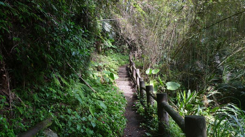 台七線下切義興吊橋的階梯