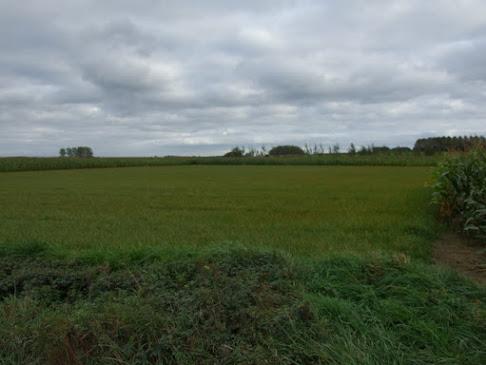 Parc Eolien Leuze-en-Hainaut & Beloeil DSCF9405.JPG
