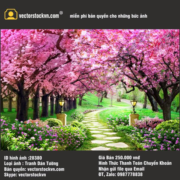 Tranh Phong cảnh Hoa Mùa xuân.