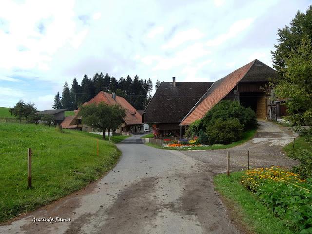 passeando - Passeando pela Suíça - 2012 - Página 14 DSC05100